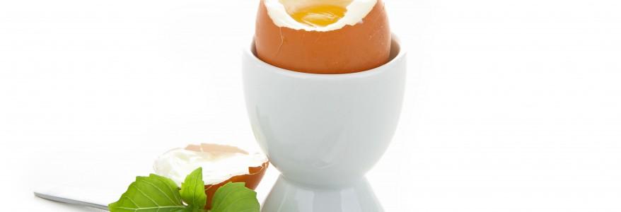 Mangez des œufs au petit déjeuner !