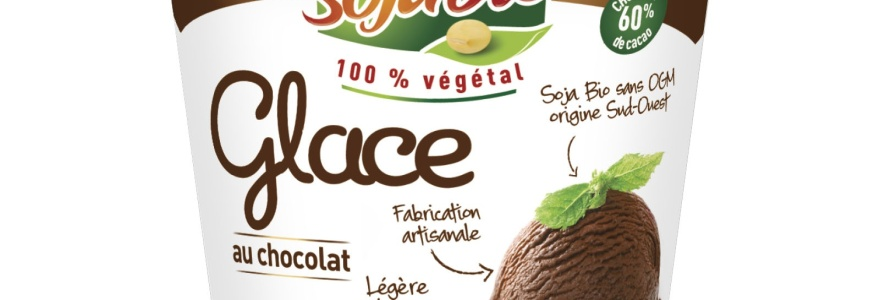 Enfin des glaces au lait de soja