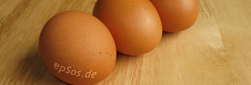 Une nouvelle étude mettant en évidence l'intérêt des protéines au petit déjeuner