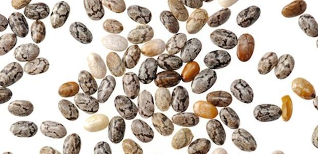 Graine de Chia : vous souhaitez manger cru et riche en oméga 3 ?