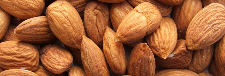 Vous faire plaisir en collation avec des amandes, des noix et du chocolat, vous avez le droit !