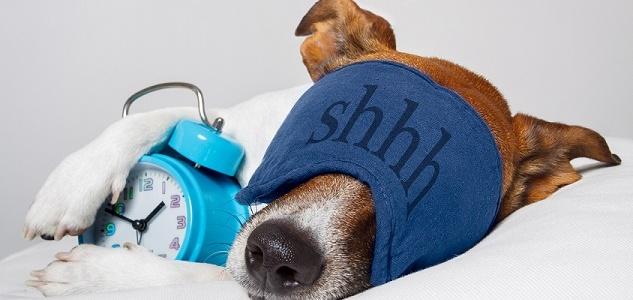 Nutrition et sommeil : le secret se trouve dans l'assiette !