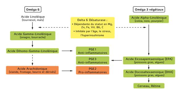 métabo AG et PGI