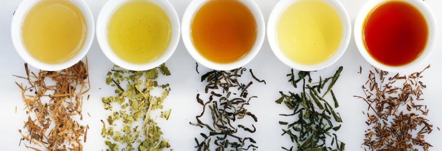 Comment bénéficier pleinement des antioxydants de votre thé?