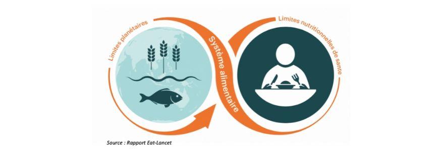 Nutrition et enjeux nutritionnels, une réflexion générale