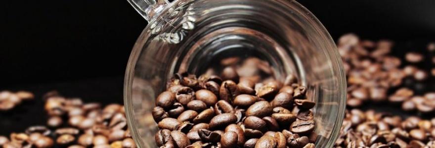 Quel est l'impact écologique de votre café ?