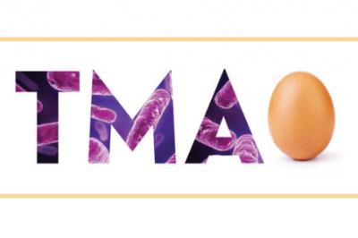 Egg and TMAO