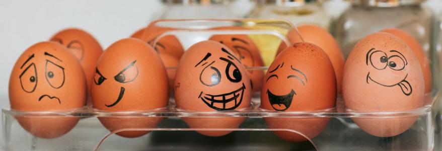 Devez-vous avoir peur de manger des œufs chaque jour?