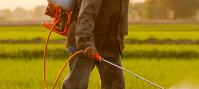 + 23 % de ventes de pesticides en France en 2020